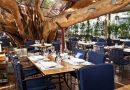 Rede internacional de restaurantes investe em TI para atender clientes