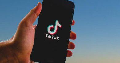 TikTok se consolida como opção de entretenimento para brasileiro durante a pandemia