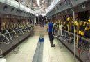 6 motivos para investir em automação de alta tecnologia para a sala de ordenha