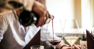 Especialista em vinhos: aos apaixonados pela bebida, é possível seguir carreira na área